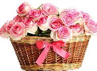 一篮子的粉玫瑰花束图片