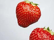 个头很大的草莓图片素材