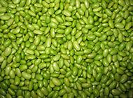 绿色非转基因黄豆图片