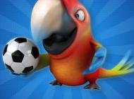 鹦鹉犬图片 可爱的3D鹦鹉图片