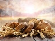 麦穗与切片面包图片