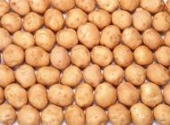 整齐的土豆素材