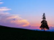 夕阳无限好唯美夕阳美景