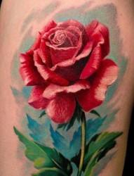 推荐一张漂亮的玫瑰花纹身作品