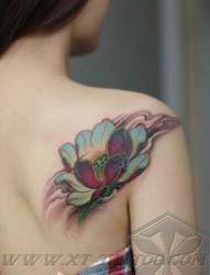 女人后肩背唯美好看的传统彩色莲花纹身图片