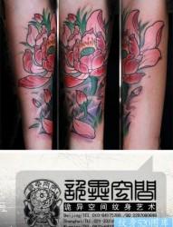 女人手臂漂亮前卫的彩色传统莲花纹身图片