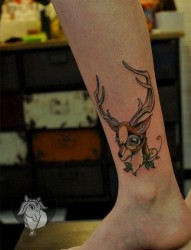 女人腿部可爱流行的小鹿纹身图片