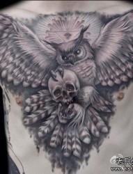 男生前胸超帅的黑白猫头鹰纹身图片