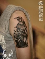 手臂流行很酷的一张乌鸦纹身图片