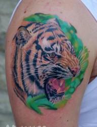 手臂霸气超酷的彩色虎头纹身图片