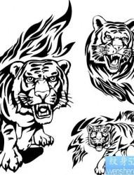 老虎纹身图片:图腾老虎纹身图片作品