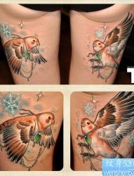 女人腿部精美的鸽子纹身图片