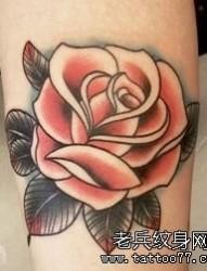 纹身520图库推荐一幅彩色玫瑰花纹身图片