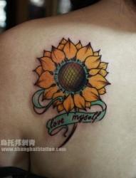 女人肩背时尚好看的向日葵花纹身图片