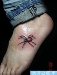 美女脚部彩色蜘蛛纹身图片