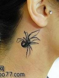 美女脖子处帅气的蜘蛛纹身图片