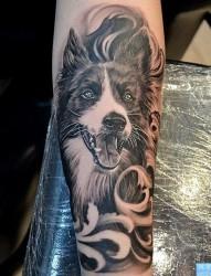 欣赏一幅个性的小狗纹身图片