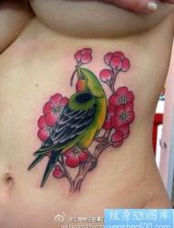 女性腹部彩色小鸟纹身图片
