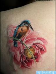 小鸟花纹身图案