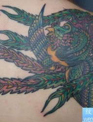 百鸟之首凤凰之后肩凤凰纹身