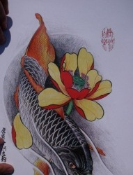 中华锦鲤纹身手稿(32)