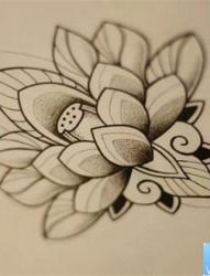 一款经典的荷花纹身图案