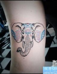 一款手臂线条象纹身图案
