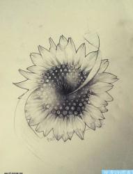 一款向日葵纹身图案