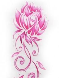 唯美的莲花手稿