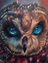 3d动物图案纹身