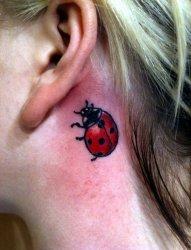 女性多款小七星瓢虫纹身图案