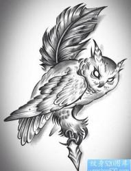 前卫经典一张黑白猫头鹰纹身手稿图片