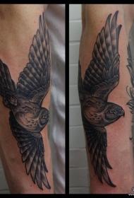 小臂欧美鸟黑灰纹身图案