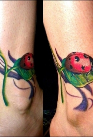 3D逼真可爱的瓢虫和绿叶脚踝纹身图案