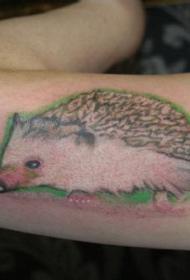 小臂写实彩色的刺猬纹身图案