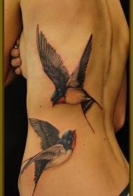 背部逼真的彩色燕子纹身图案