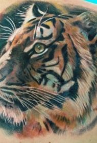 背部美丽的老虎头纹身图案