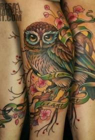 漂亮的彩色猫头鹰花朵字母纹身图案