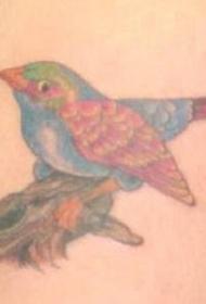 写实逼真的小鸟与树枝纹身图案