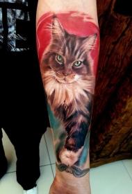 小臂华丽写实的猫肖像纹身图案
