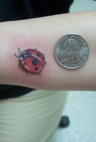 可爱的小瓢虫纹身图案