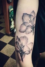 手臂漂亮的黑色透明花朵纹身图案