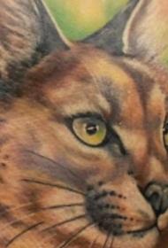 背部简单写实彩色野猫纹身图案