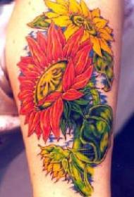 肩部黄色和红色向日葵纹身图案