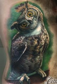 侧肋彩色逼真猫头鹰纹身图案