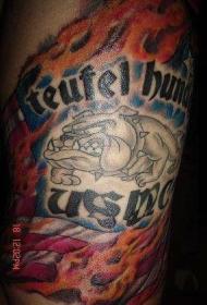 手臂彩色美国斗牛犬与英文纹身图案