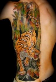 背部彩色日本老虎肋骨纹身图案
