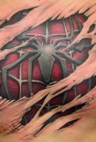 彩色蜘蛛撕皮纹身图案