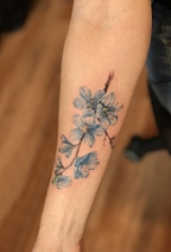 男生手臂上蓝色渐变简单线条小清新植物花朵纹身图片