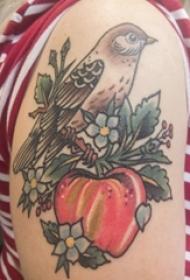 鸟纹身 女生手臂上鸟纹身图片